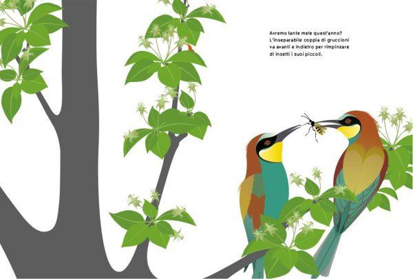Un libro molto resistente di ottima qualità, coloratissimo con immagini semplici ma dirette. Un libro olto educativo per spiegare l'evoluzione delle stagioni sulla natura, imparare ad osservare, imprarae nome di uccelli e le loro abitudini, Dai 4 anni in su!